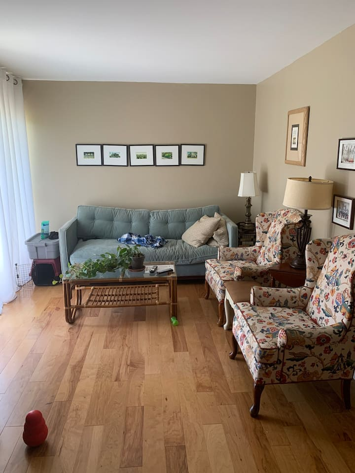Private Apartment in Beautiful Webster Groves - B2