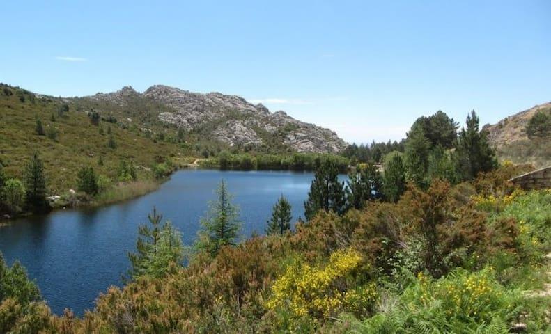 Discovering North Sardinia