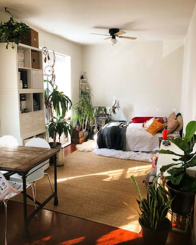 Bright & Sunny Oasis in East Village