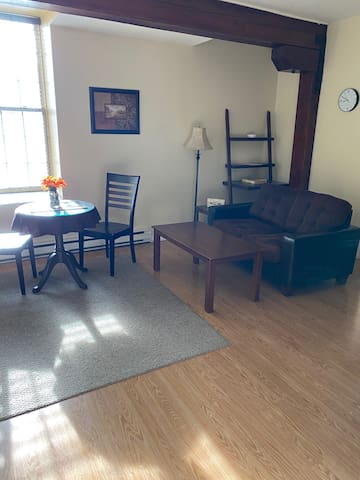 1 Bedroom Apartment in Downtown St. John's