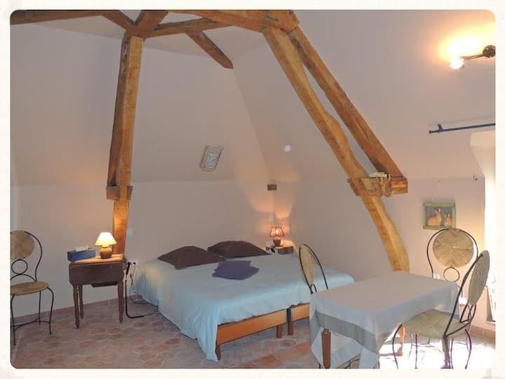 Chambre 35 m2 dans manoir. salle eau et wc  privés