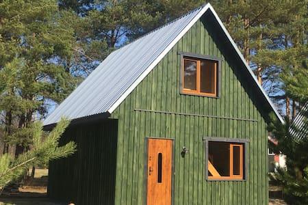 Metsaääre accommodation Green house - Reiu - Talo
