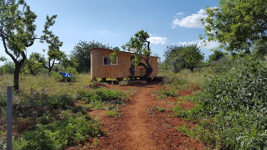 Cabana Fidel mit Terrasse - Quelfes