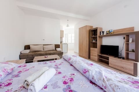 Bachelor apartment Vukmarkovic #2