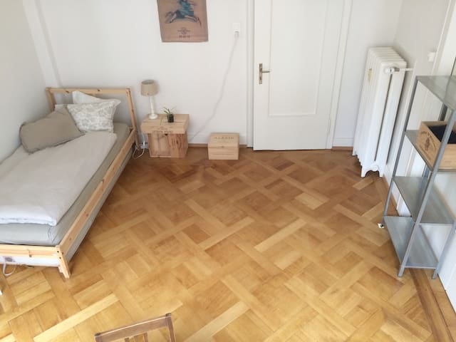 Clean room for one or more in the heart of Basel - Basilea - Pis