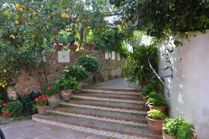 Residence Tirreno