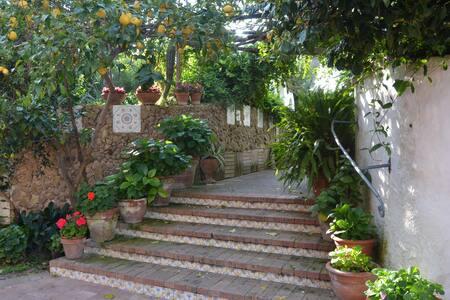 Residence Tirreno - Procida - Andere