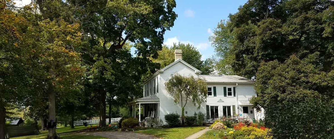 Cincinnati B&B for animal lovers