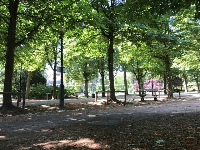 """""""Le jardin du Faubourg"""""""