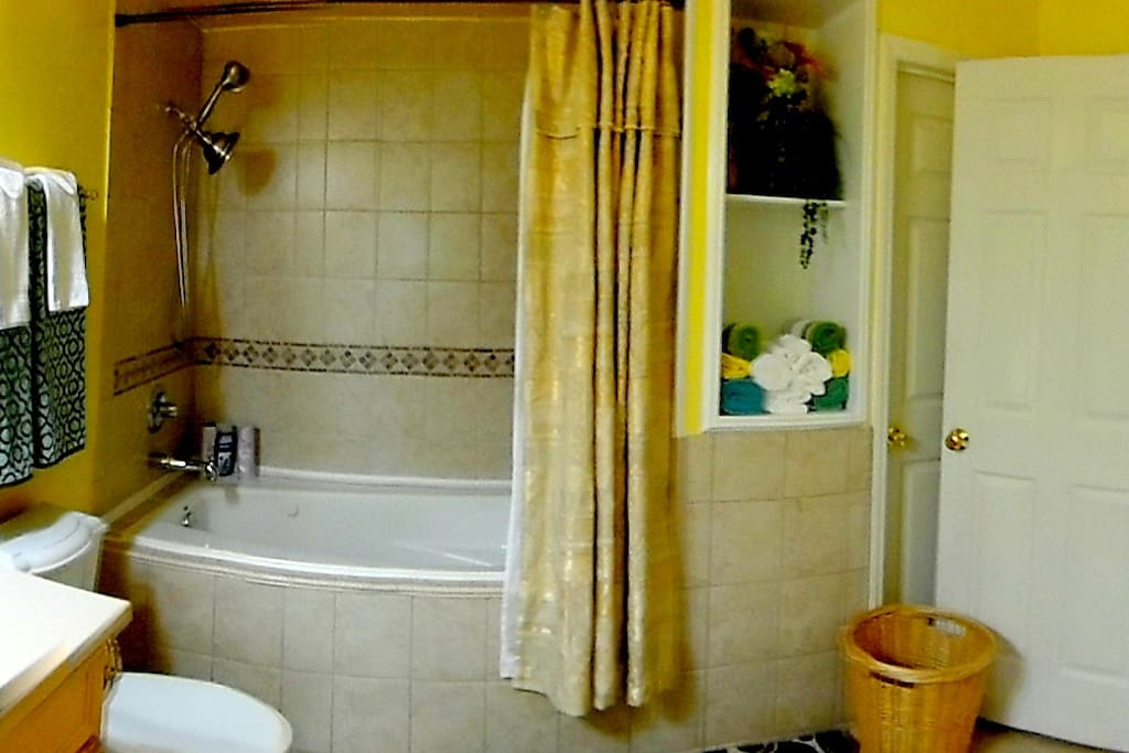 Your Bathroom with double head shower and deep tub,  Towels, Electric Hanging Towel Dryer, Shampoo, Conditioner, Liquid body soap, Toothpaste.
