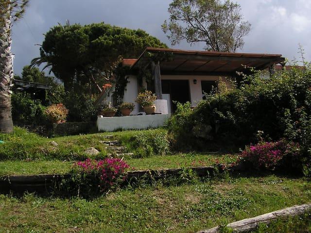 Casa en Paloma Baja ,Tarifa - Tarifa - Huis