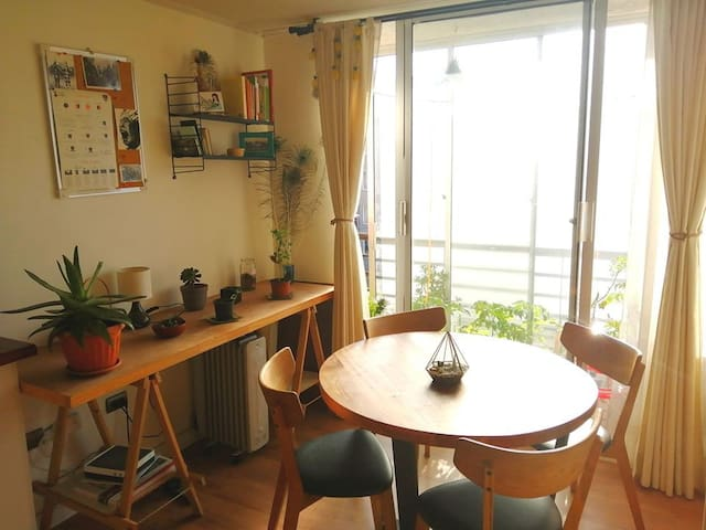 Cozy, sunny apartment