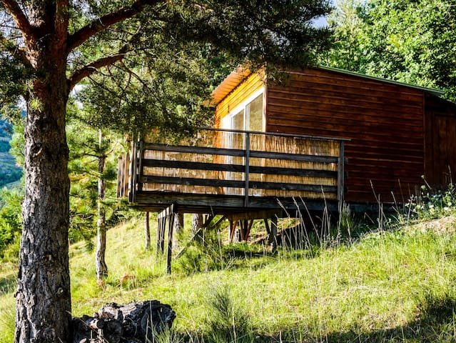 Les Cabanes de La Vigière (St Honorat) - Sauze - Blockhütte