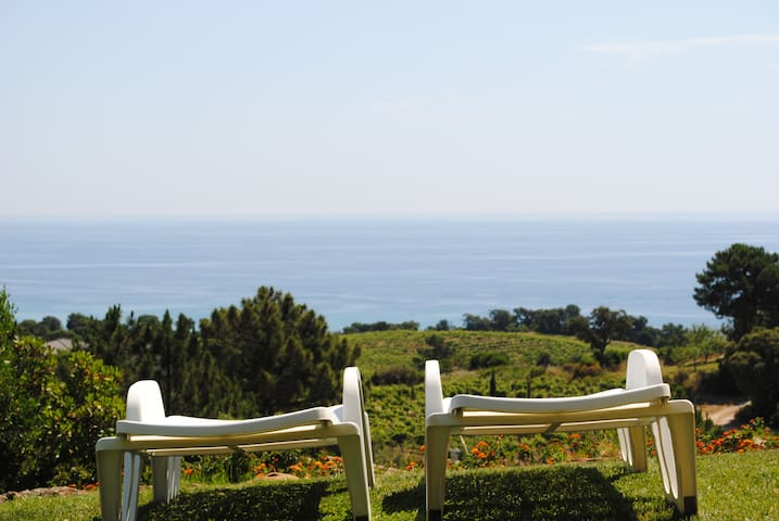 villa dans la vigne et sur la mer - Sari-Solenzara - Vila