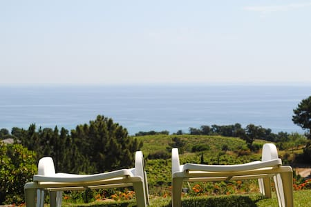 villa dans la vigne et sur la mer - Sari-Solenzara