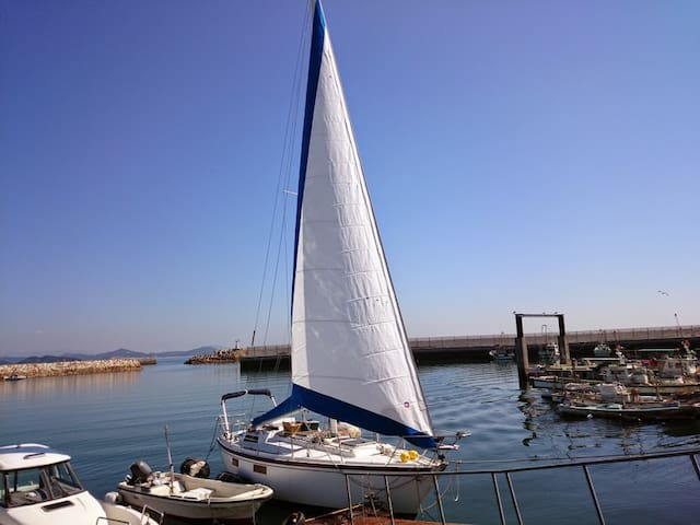 The stay in the sailboat and the fish market!
