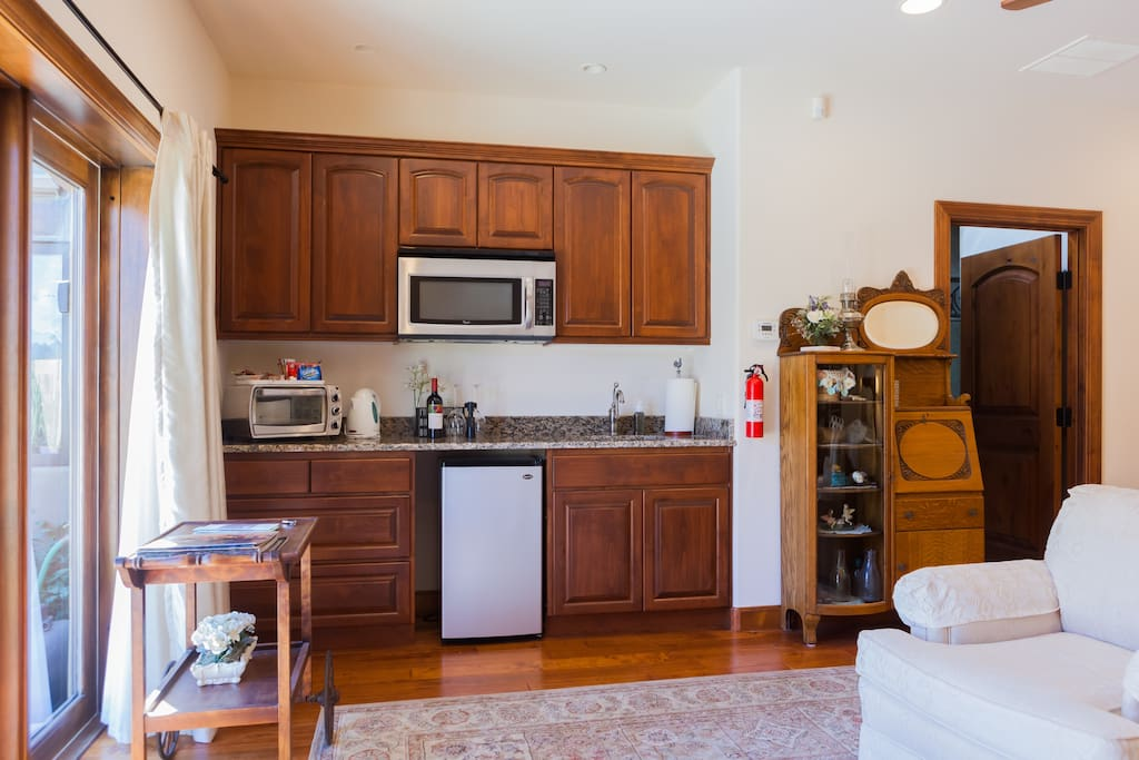 Kitchenette with sink, microwave, toaster oven, induction cook top,  and refrigerator
