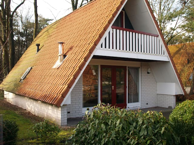 Holiday house In het Reestdal - IJhorst - Bungalow