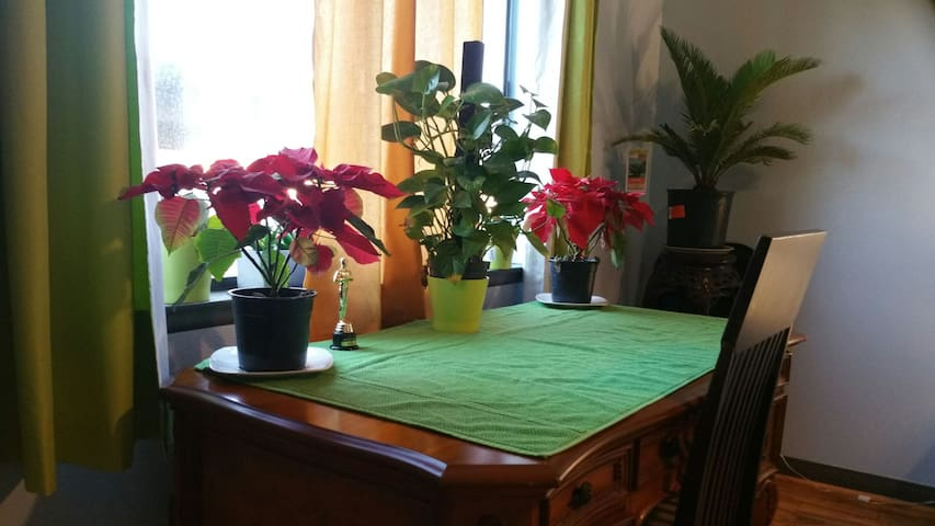 Seasonal X - mas plants
