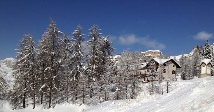 THE HOUSE IN THE PARK OF THE  DOLOMITES