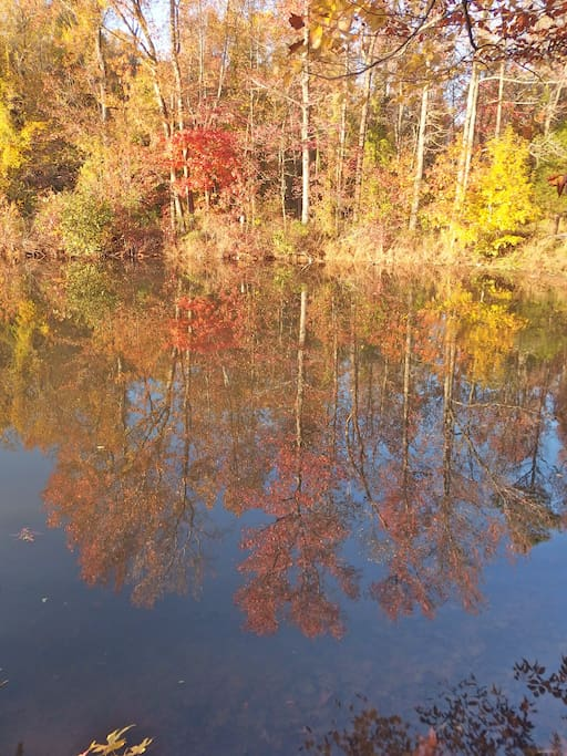 Guilford Lake in the fall