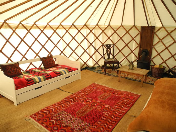 Stapleton Farm Yurt near Aylsham