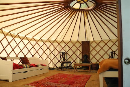 Stapleton Farm Yurt near Aylsham - Jurte