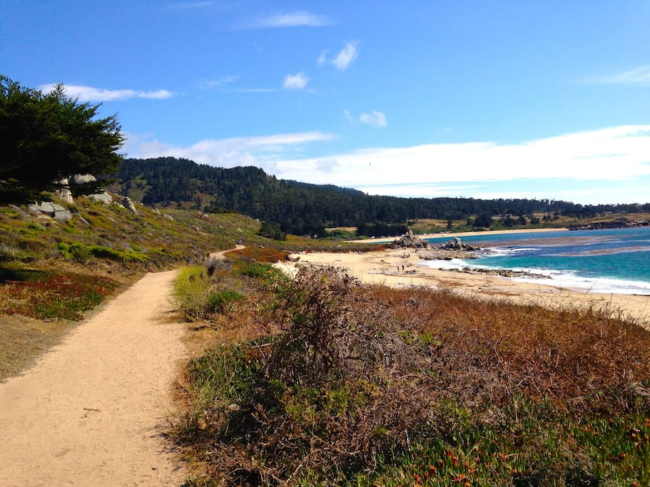 Beach and walking trails
