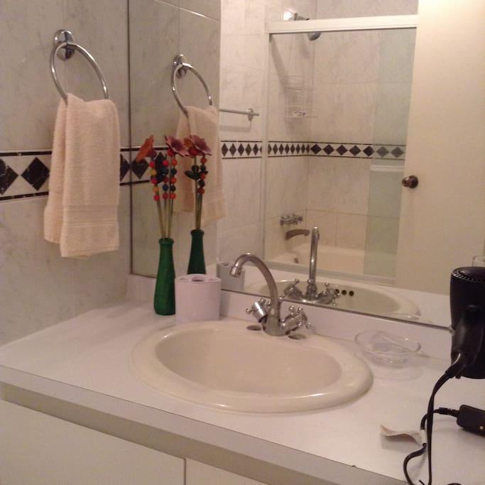 GUEST BATHROOM IN LIVING ROOM