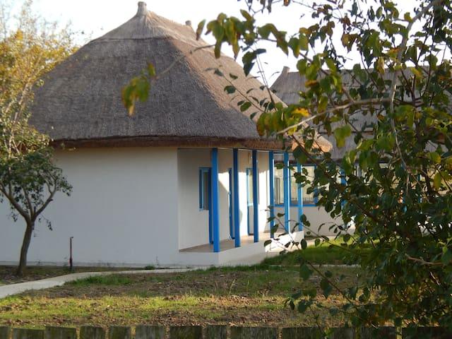 Stuffino Crisan Place