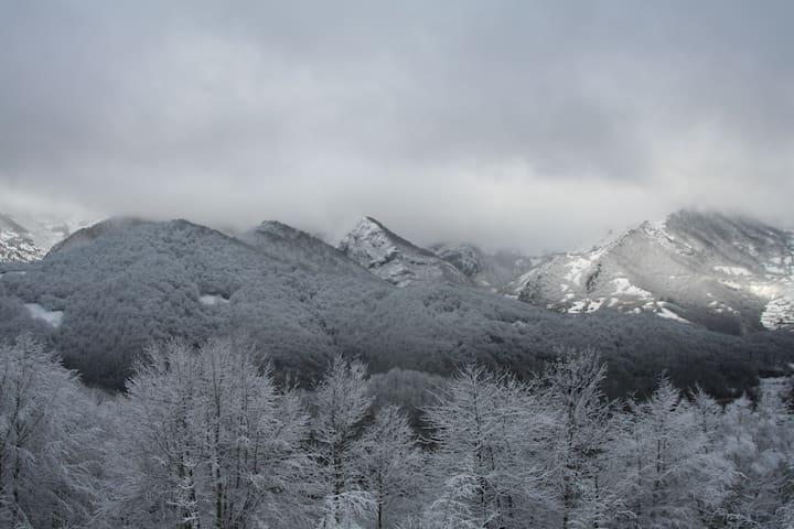 Vistas con nieve