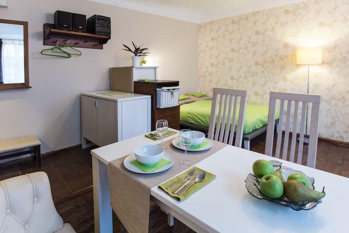 Charming studio type apartment - Riga - Appartement