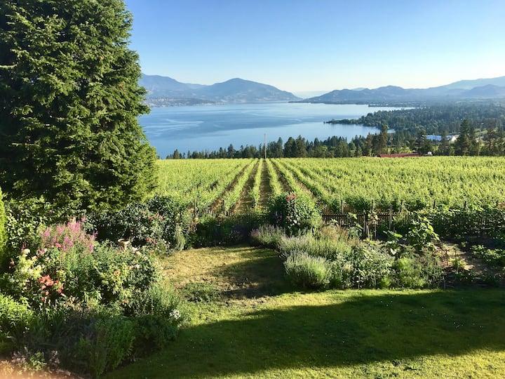 Peaceful Retreat Stunning Vineyard & Lake Views