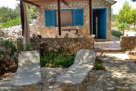 All house in the nature-no cars - Otok Murter