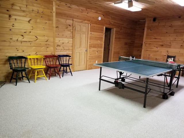 downstairs game room pingpong table