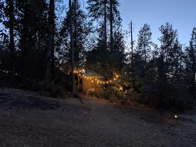 Secluded Yosemite Getaway - Yosemite Yurt