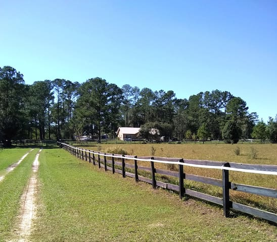 Ocala Horse Farm, Private Apt., Boarding Avail.