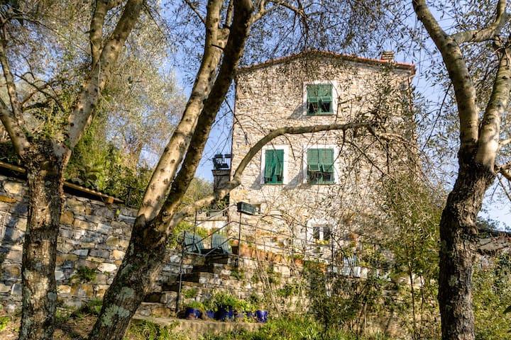 Cosy cottage near Portofino:  Piano Nobile - ราปัลโล - บ้าน