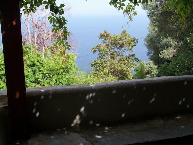 T4 dans maison de village vue mer - Brando - Apartment