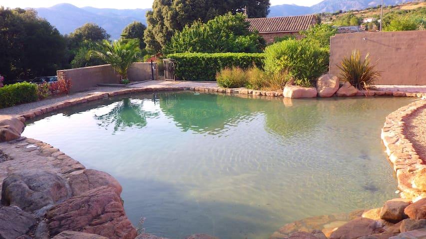 Villa Gilles 2 chambres piscine & barbecue - CUTTOLI-Corticchiato - Casa