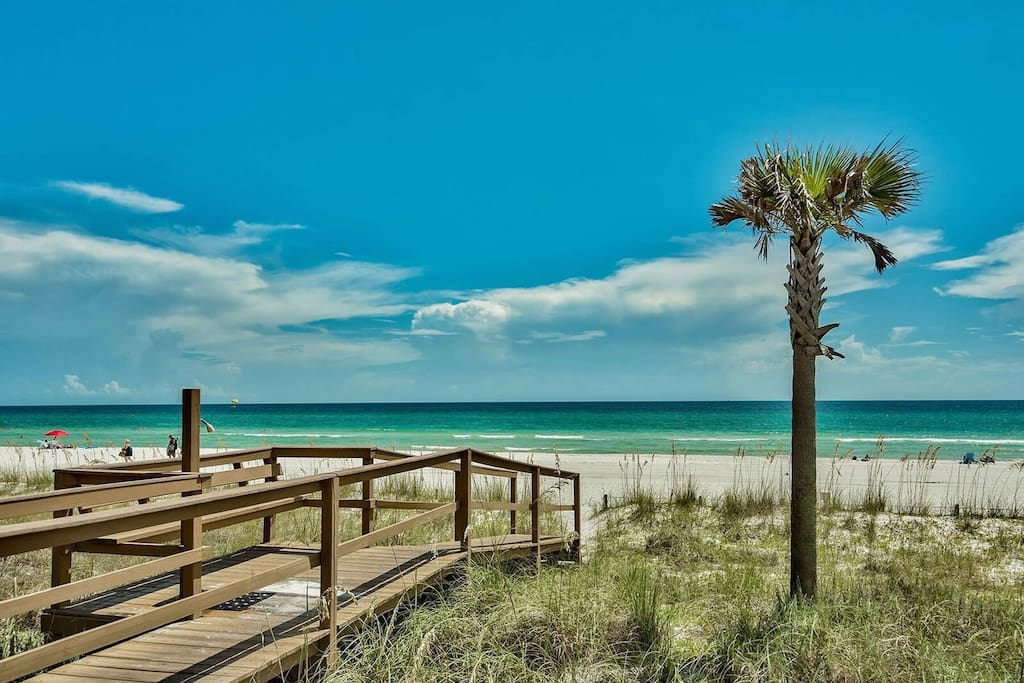 A palm tree and your private beach... we are located on the very quiet west end of PCB