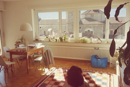 Bellissimo appartamento nel centro di Locarno - 洛迦诺 - 公寓