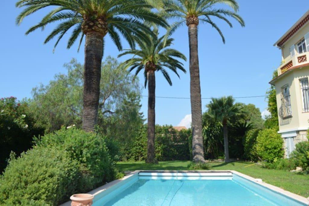 Jardin magnifique avec piscine de rêve