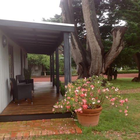 Gisborne Cottage Accommodation - Gisborne - Blockhütte