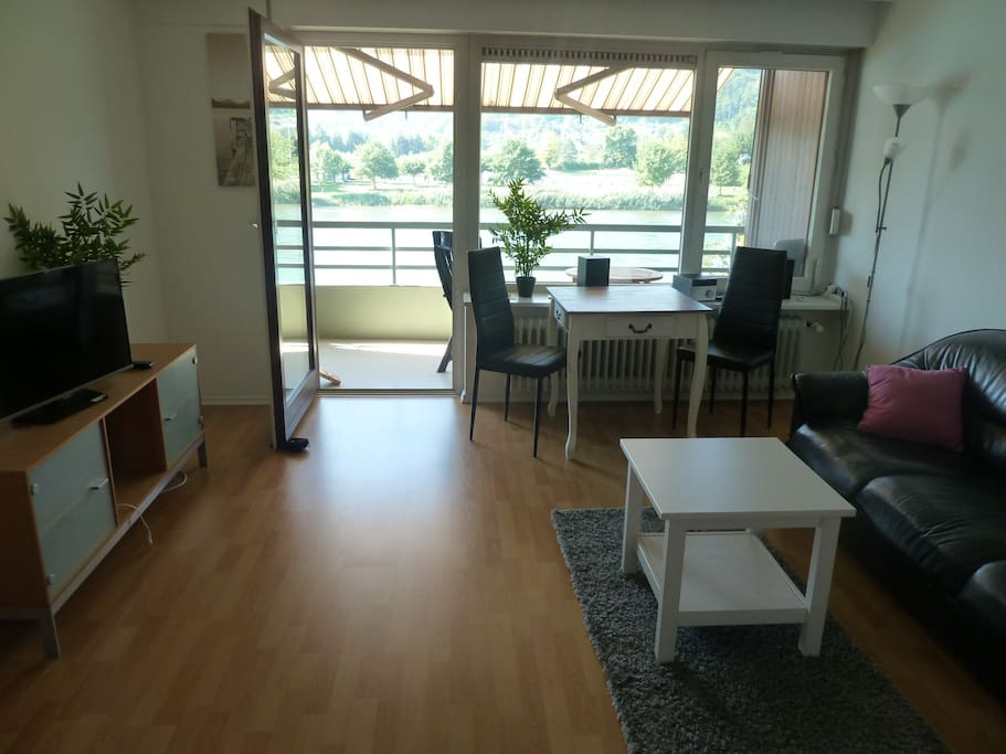 living room with direct view on the river Rhein and on the side of the rhein is Switzerland