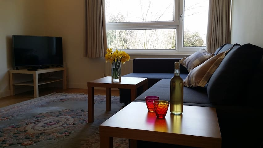 Nice flat in central Cambridge - Cambridge - Byt
