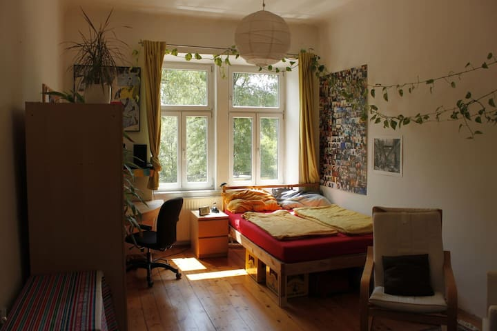 Big bright room for two close to city-center - Vienne - Appartement