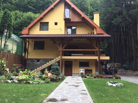 Cameră Dublă - Casa Foișor