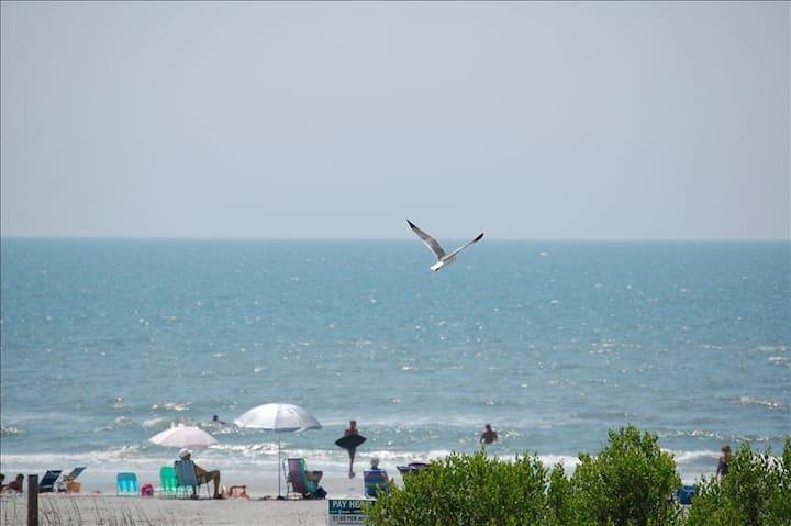 Folly Contemporary & Comfortable- Great Ocean View