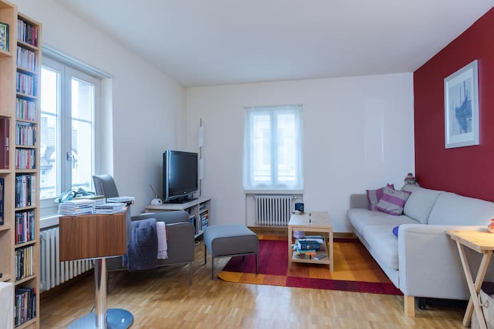 Cosy flat close to everything - Zürich - Apartmen